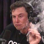 Elon's Musk