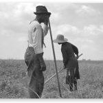 Tenant Farmer and Wife