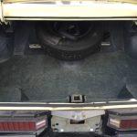 GS trunk