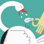 Goose pluck